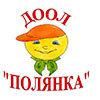 Детский оздоровительно-образовательный лагерь «Полянка»